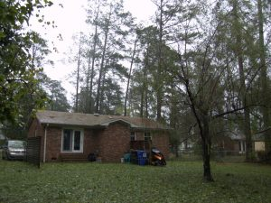 House During the Hurricane